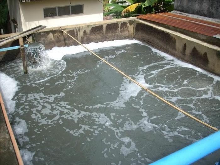 Chú ý vật liệu để bể không bị thấm nước